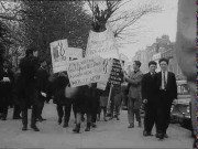 Students Stage Boycott March, 1960, 35mm film, black and white. Courtesy Gael Linn. Held at the Irish Film Archive, Irish Film Institute, Dublin.